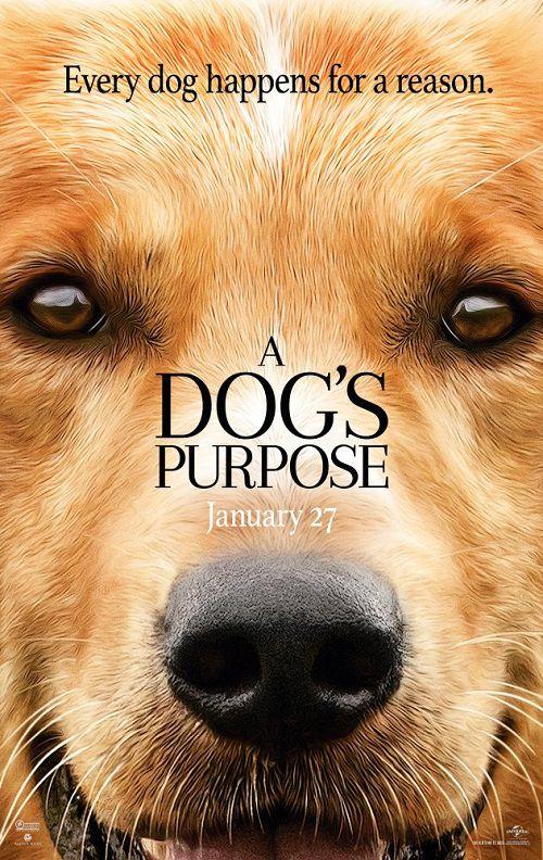 دانلود فیلم هدف یک سگ A Dog's Purpose 2017