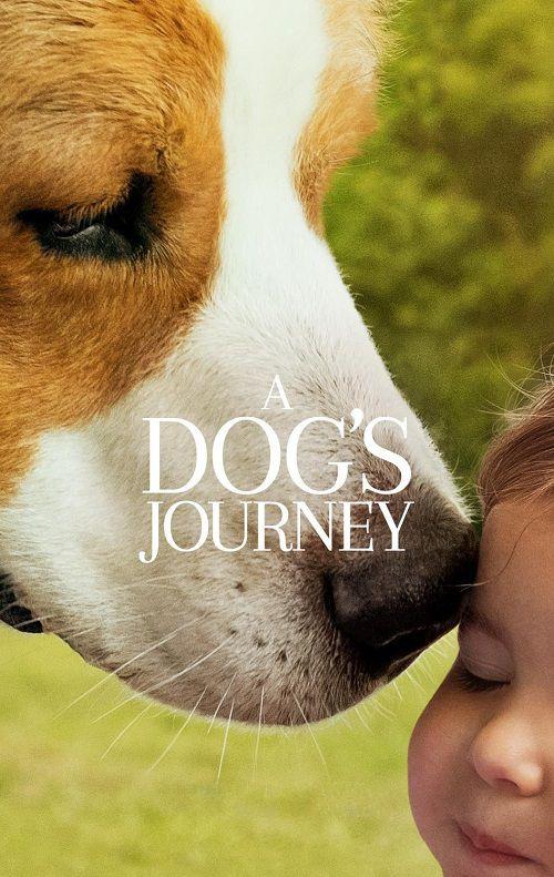 دانلود فیلم سفر یک سگ A Dogs Journey 2019