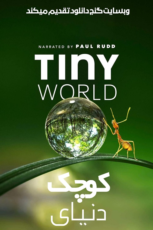 دانلود مستند دنیای کوچک با دوبله فارسی Tiny World