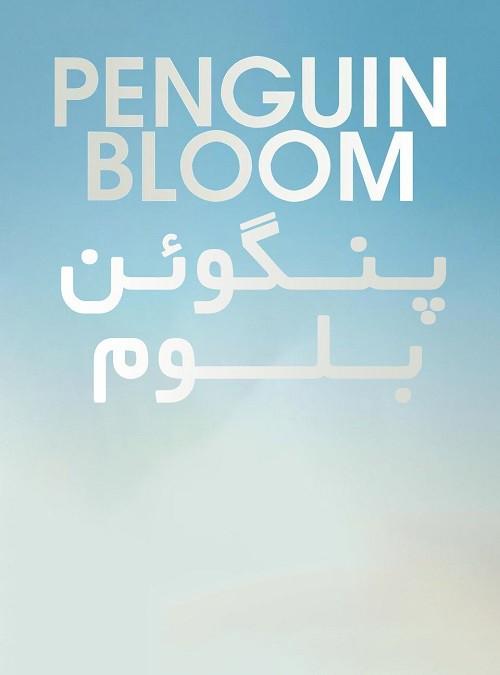 دانلود فیلم Penguin Bloom 2020